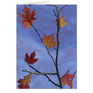 Carte Ciel d'automne