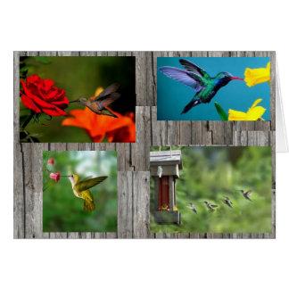 Carte colibris d'arrière - plan de barnwood