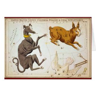 Carte Commandant de Canis, Lepus, Columba Noachi et