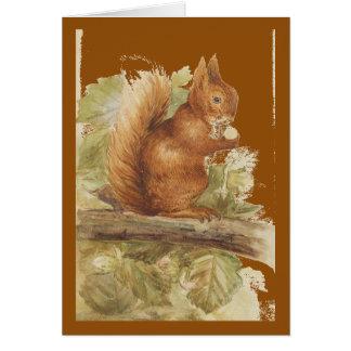 Carte Conception d'écureuil rouge