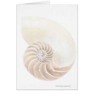 Carte Coquille de Nautilus, plan rapproché