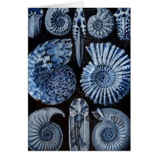 Carte Coquilles bleues