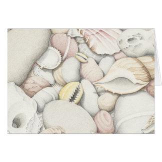 Carte Coquilles et cailloux de mer dans le crayon coloré