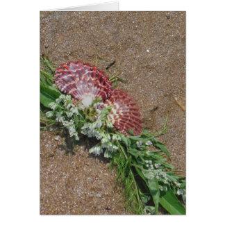 Carte coquilles roses et fleurs blanches sur le sable de