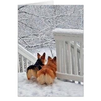 Carte Corgis dans la neige