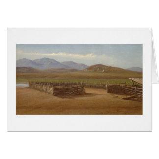 Carte Corral, Rancho Santa Margarita (1162)