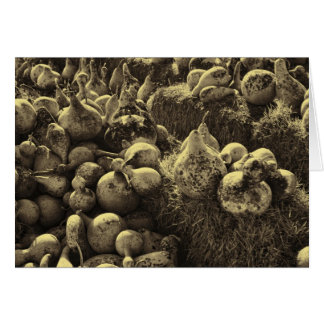 Carte Courges de volière dans des tons de sépia