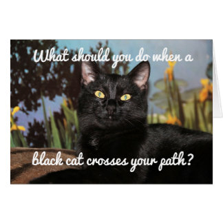 Carte Crainte des chats noirs