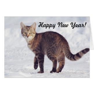 Carte craquante de bonne année du chat | de neige