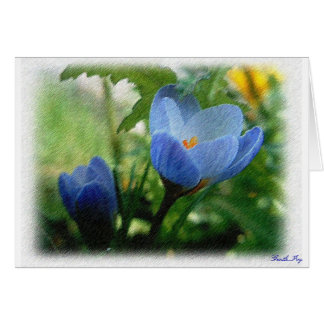Carte Crocus bleu