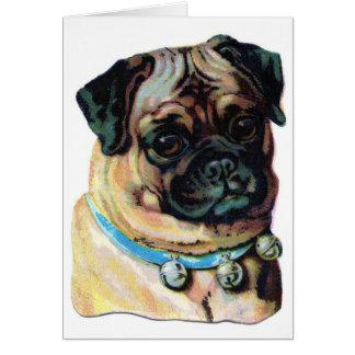 Carte Cru de chien de carlin