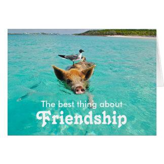 Carte d'amitié de porc de natation