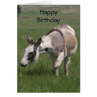 Carte d'anniversaire d'âne