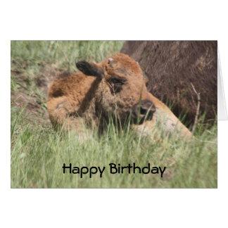 Carte d'anniversaire de Buffalo de bébé