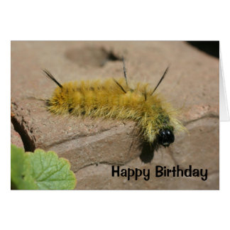 Carte d'anniversaire de nature de Caterpillar de