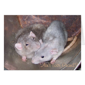 Carte d'anniversaire de rat d'animal familier