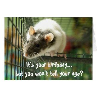 Carte d'anniversaire drôle de photo de rat