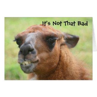 Carte d'anniversaire humoristique de lama fâché