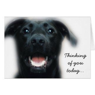 Carte de bonne chance de chien