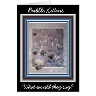 Carte de chatons de bulle