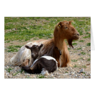 Carte de chèvres