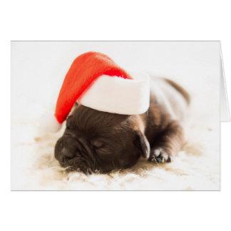 Carte de chiot de bouledogue de Noël - MASQUEZ À