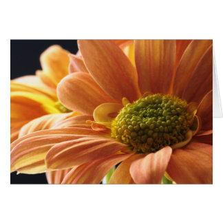 Carte de chrysanthème