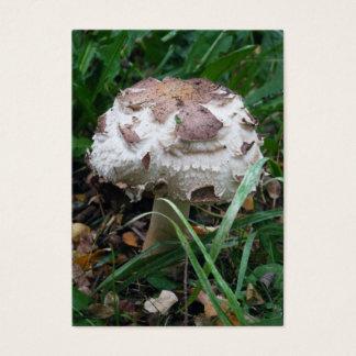 Carte de collection de champignon