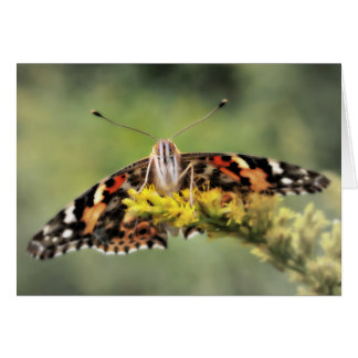 Carte de félicitations de papillon