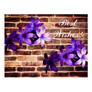 Carte de fleurs de mur de briques