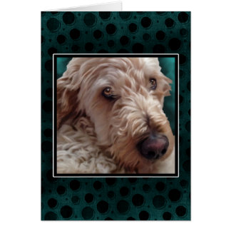 Carte de Goldendoodle
