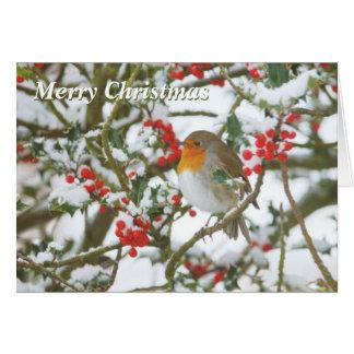 Carte de houx et de Noël de Robin