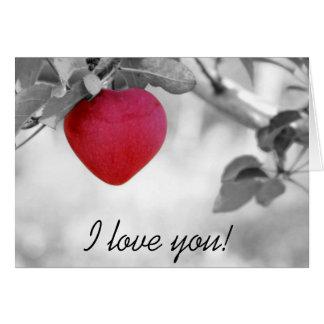 Carte de jour de Valentines de coeur de fruit