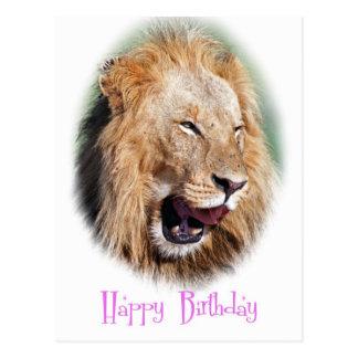 Carte de joyeux anniversaire de lion de sourire cartes postales