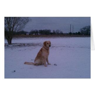 Carte de neige de golden retriever