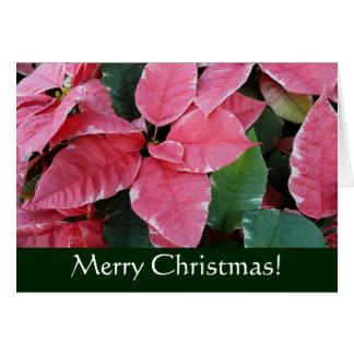 Carte Carte de Noël argentée de poinsettias de marbre
