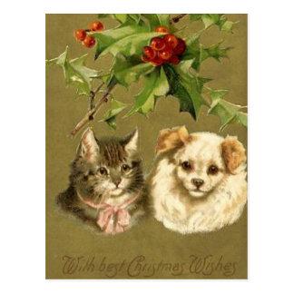 Carte de Noël de chat et de chien Cartes Postales