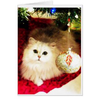 Carte de Noël de chat persan