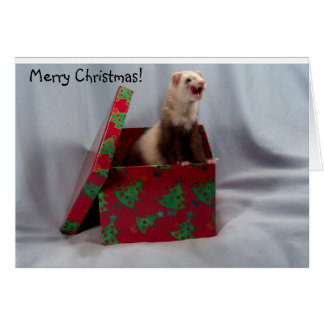 Carte de Noël de furet