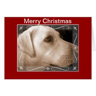Carte de Noël de Labrador