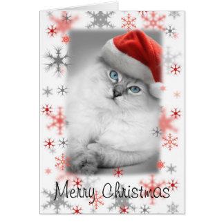 carte de Noël de minou de père Noël