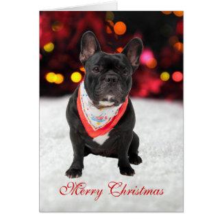 Carte de Noël faite sur commande de photo de chien
