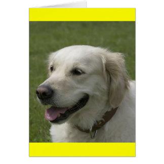 Carte de note de chiot de golden retriever