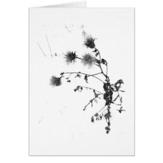 Carte de note de fleurs sauvages d'hiver