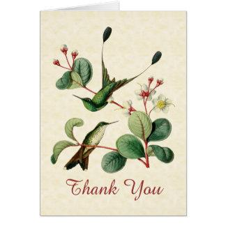 Carte de note de Merci de colibri de queue de