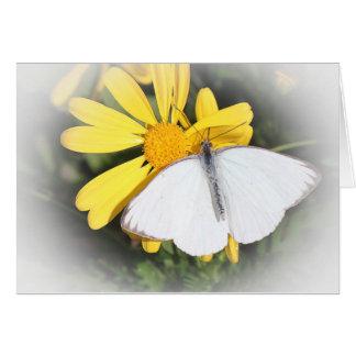 Carte de note de papillon