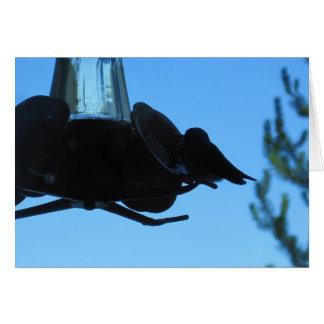 Carte de note horizontale de conducteur de colibri