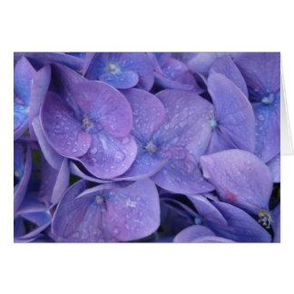 carte de note - hortensias bleus