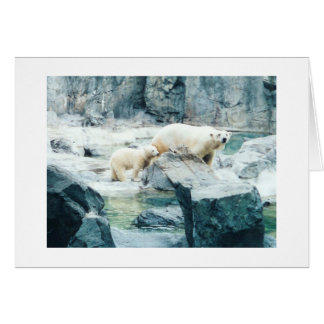 carte de petit animal et de maman d'ours blanc