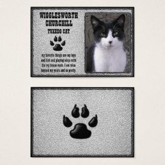 Carte de profil de chat d'animal familier